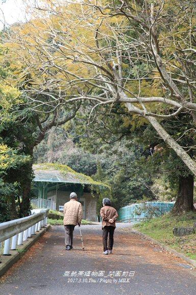 長崎県亜熱帯植物園閉園前日11.jpg