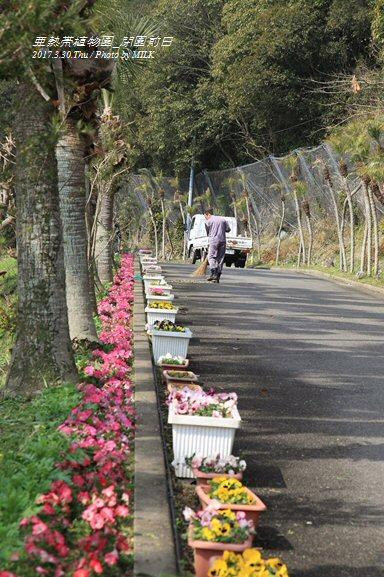 長崎県亜熱帯植物園閉園前日12.jpg