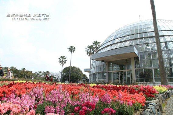 長崎県亜熱帯植物園閉園前日3.jpg