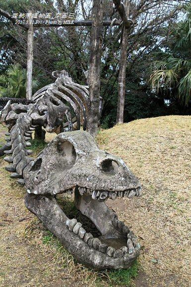 長崎県亜熱帯植物園閉園日24.jpg